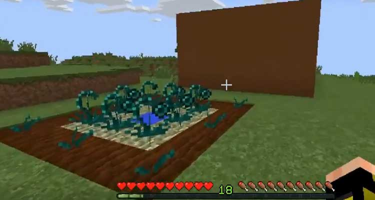 """That allows you to grow and harvest a completely new kind of seed called the """"Ender"""""""