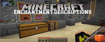 Enchantment Descriptions Mod 1.16.4/1.12.2/1.10.2