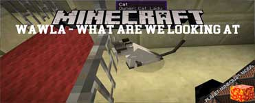 Wawla – What Are We Looking At Mod 1.16.4/1.12.2/1.10.2/1.7.10