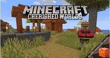 Cherished Worlds Mod 1.16.5/1.15.2/1.12.2
