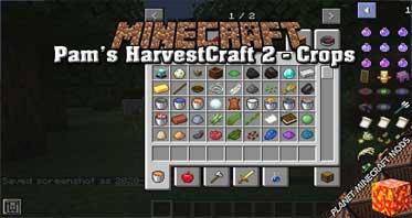 Pam's HarvestCraft 2 – Crops Mod 1.16.5/1.15.2/1.14.4